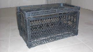Клетка для перепелов без вложений за 30 минут :-) .  quail cage