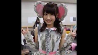東由樹 Jul 23, 2014 おはーくはくまいまい◡̈*♡ teamM動物達の動画で 朝...