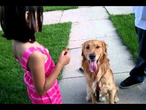 video-2011-06-16-18-37-24