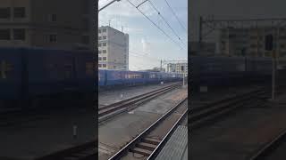 883系特急ソニック 箱崎駅通過