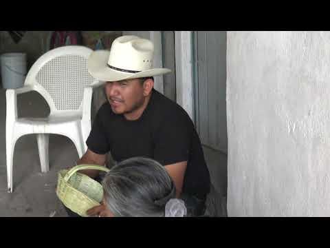 LA MITAD DE MI (VIDEO OFICIAL 2020) – CACIQUES DE SAN LUIS POTOSI (EL ESTILO POTOSINO PRESENTE)