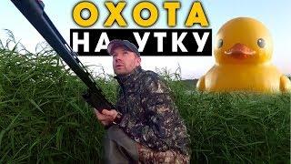 Охота на уток, все про охоту с видео