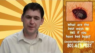 How do I know if I have bed bugs - Salt Lake City Pest Control