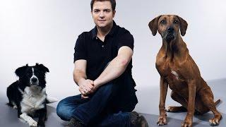 """Macht Platz! Die 7. Staffel """"Der Hundeprofi"""" mit Martin Rütter bei VOX"""