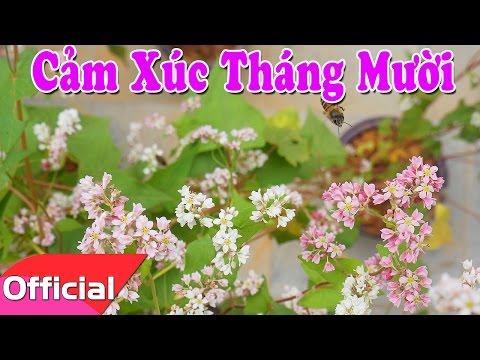 [Karaoke MV HD] Cảm Xúc Tháng Mười - Sáng tác: Nguyễn Thành