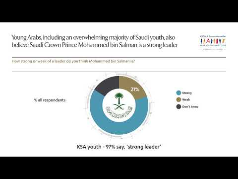 Arab Youth Survey 2018 | Finding 3C