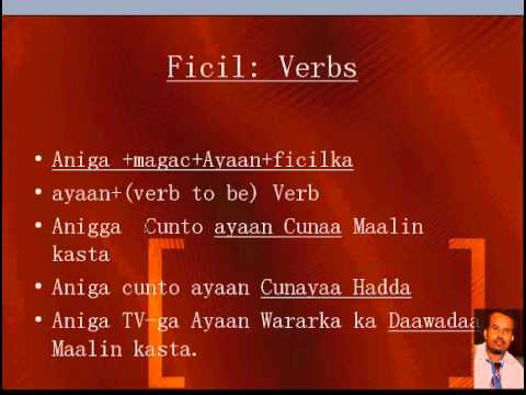 Somali language  grammar (Part 1) for English Speakers
