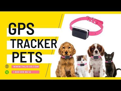 new-gps-pet-tracker,-waterproof-smart-wifi-mini-portable-pet-anti-lost-gps