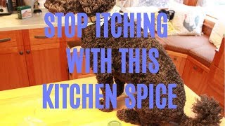 Kitchen Spice That Stops Itching