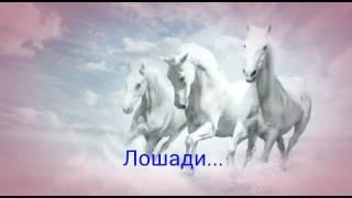 Моя любовь❤ - лошади 🐴...