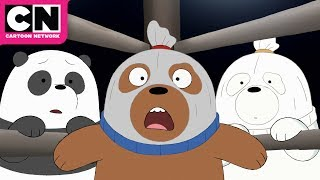 We Bare Bears | Baby Bear Wrestlers | Cartoon Network