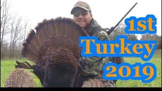 1ST TURKEY of 2019 TURKEY SEASON🦃🦃🦃 at Hollis Farms thumbnail
