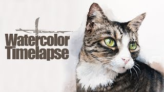 Watercolor [Timelapse] by Max Moser - Cat Portrait
