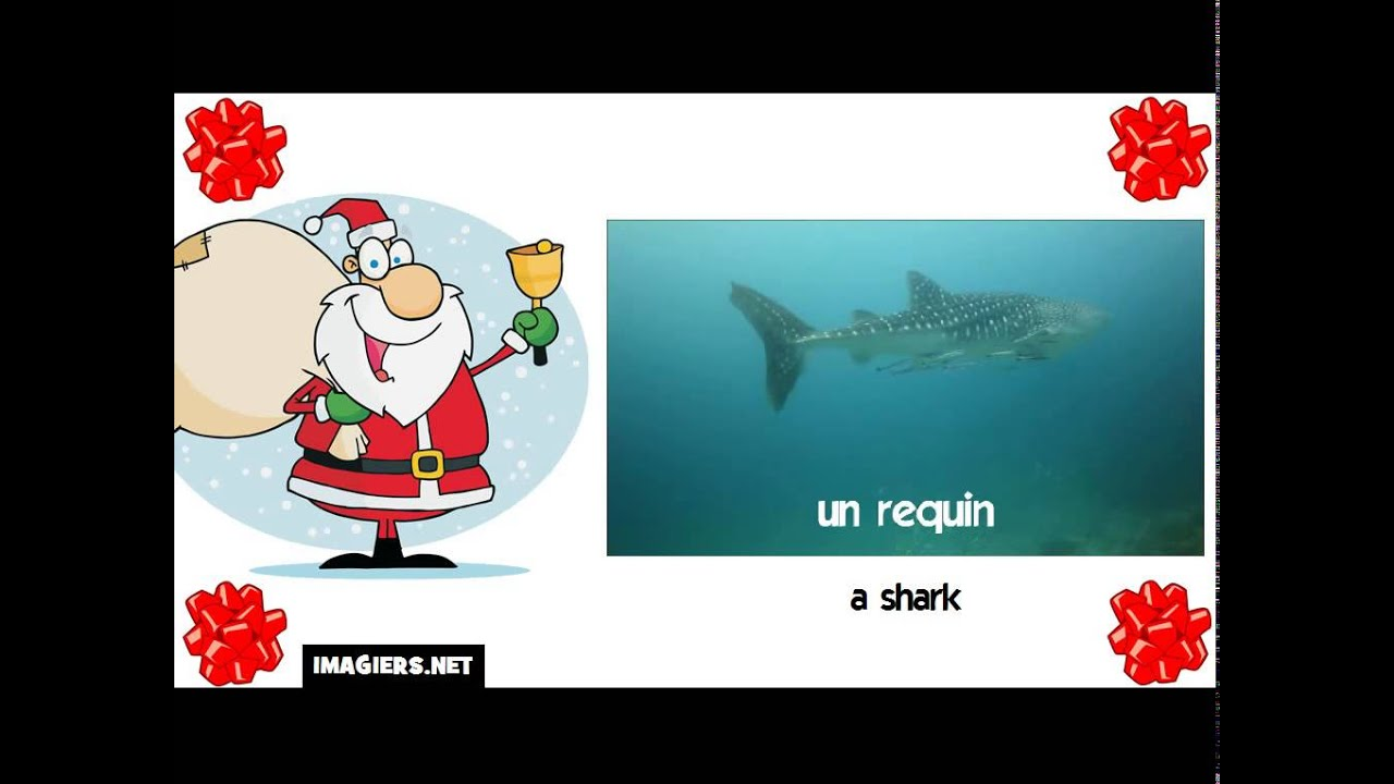 how to say shark in spanish
