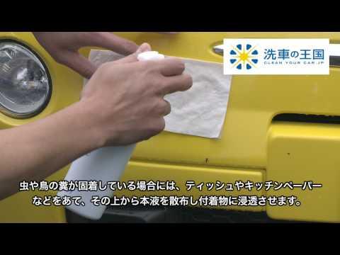 [洗車王國] 鳥蟲糞清除劑_日本銷售No.1/ 樹汁/蟲屍/不沾手/不傷漆面/照顧愛車超簡單 A15
