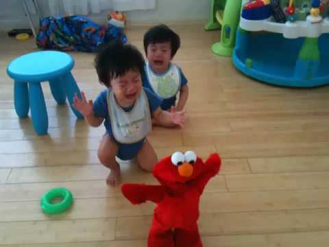 Twin Babies Crying And Screaming When Elmo Shakes