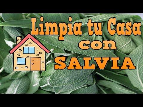 LIMPIA ENERGIA DE TU CASA CON SALVIA