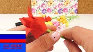 Тюльпаны оригами весенний букет из бумаги(подпишись на новые видео ;-) http://www.youtube.com/channel/UCJpwGAdcGcn7pI9FRNWIlRA?sub_confirmation=1 кана́л: ..., 2015-05-18T13:00:01.000Z)