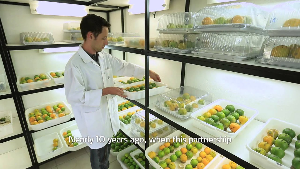 innovation in agriculture Global agriculture is facing an unprecedented challenge by 2050, the world's  population is expected to swell by two billion people beyond the sheer number  of.
