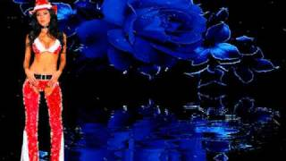Die Gitare Und das Meer - Freddy Quinn.WMV