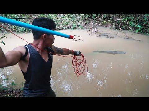 How To Make Spearfishing   Spearfishing VS Huge Fish