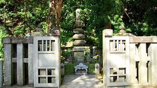 鎌倉幕府の初代征夷大将軍・・・・