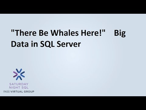 'There Be Whales Here!'    Big Data in SQL Server