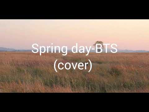 Spring Day//BTS 🌸(cover)