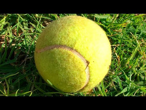 If You See a Random Tennis Ball, Don't Pick It Up!