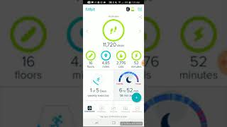 Fitbit App Overview