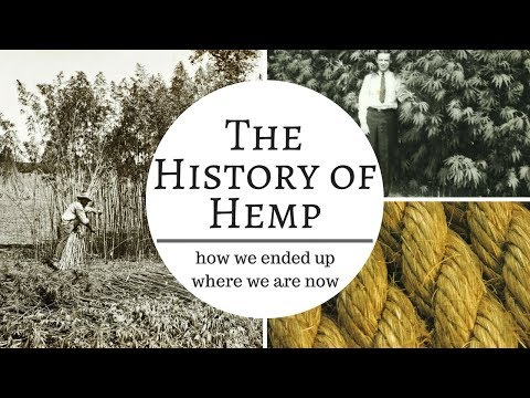 The History of Hemp (10,000 years in 10 minutes)
