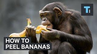 How to peel bananas