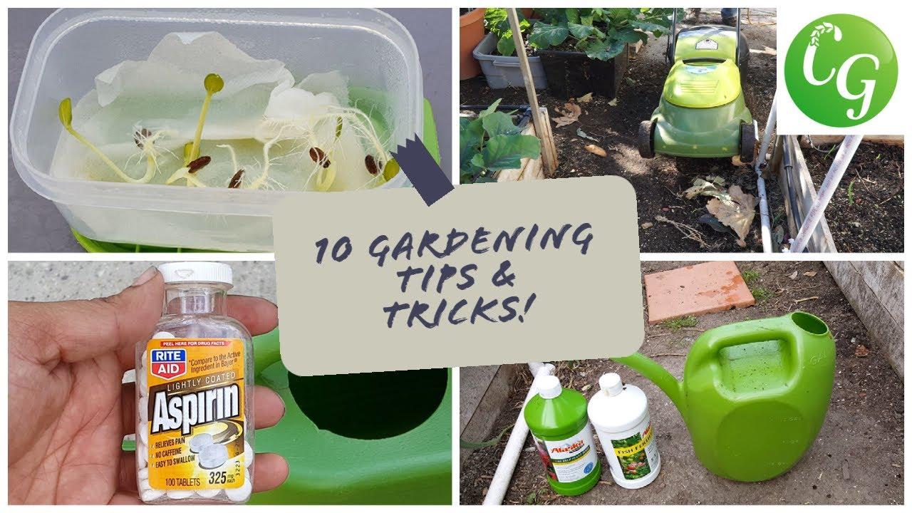 10 Gardening Tips & Ideas Every Gardener Should Know In 4K YouTube