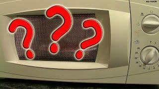 Что будет, если положить хворост в микроволновку???