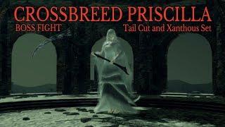 Dark Souls Remastered: Crossbreed Priscilla | Tail Cut & Xanthous Set