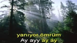 Ahmet Kaya Söyle karaoke