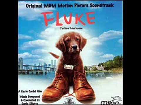 Fluke OST 10. The Journey To Hopewell