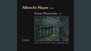 Oboe Sonata in D Major, Op. 166: II. Ad libitum - Allegretto - Ad libitum