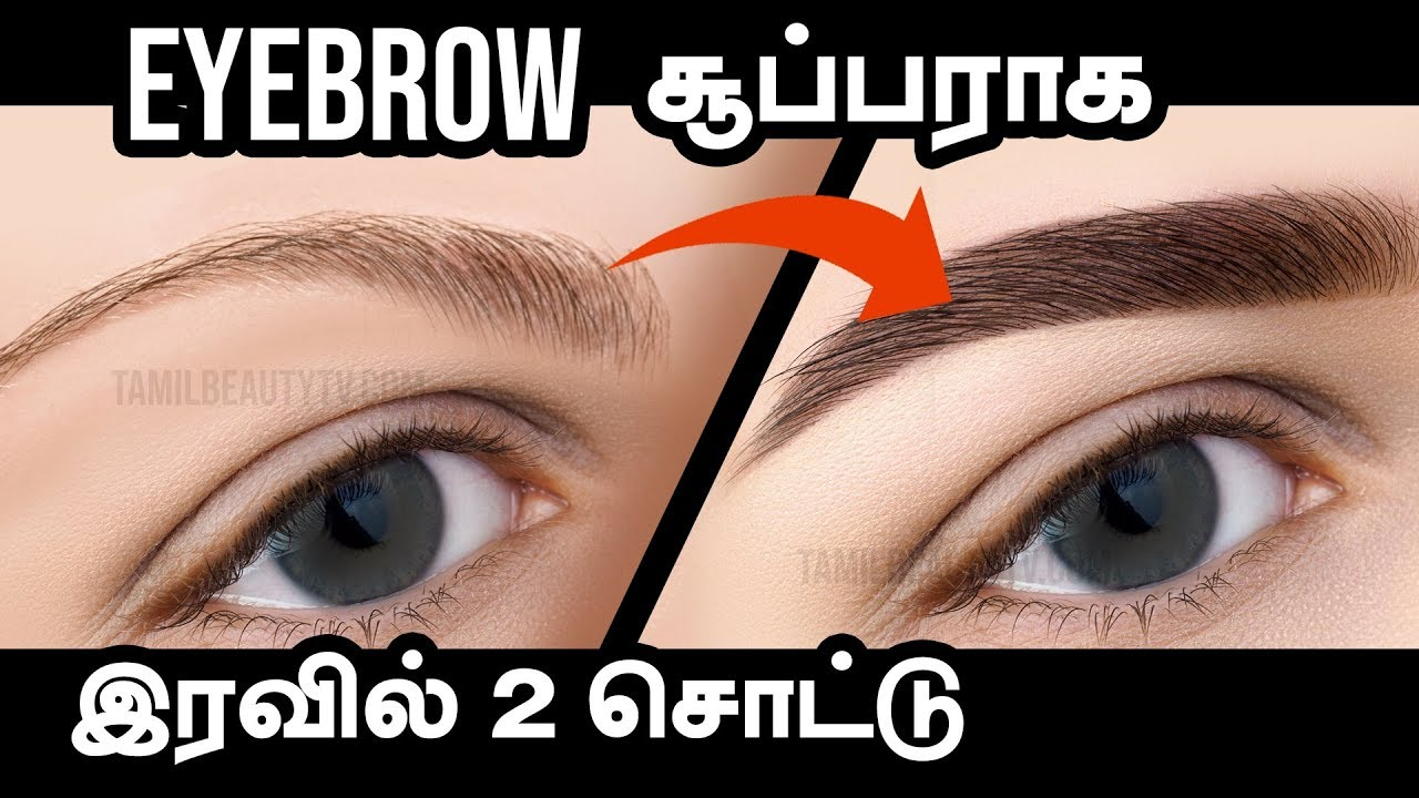 f0344e790d8 Natural Ways to Grow Thick Eyebrows - Tamil Beauty Tips - YouTube