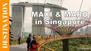 Singapore attractions - Sightseeing in Singapore, what to see - Our holiday