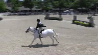 Video of ASTRO BOY ridden by ELLE GIBBS from ShowNet!