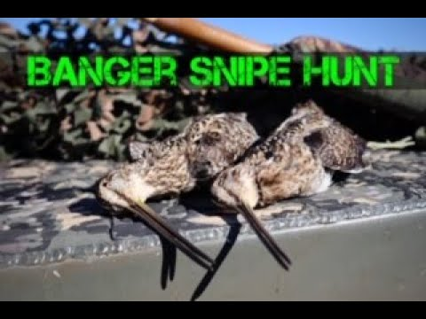 Banger Snipe Hunt In Florida
