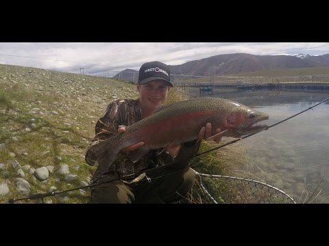 Drifting Egg Pattern's For Twizel Canal Rainbow Trout.