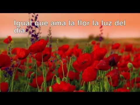 Amapola - Andrea Bocelli - Leyenda en Español