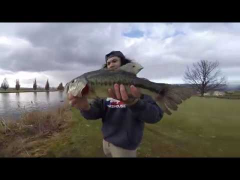 Winter bass fishing in idaho youtube for Bass fishing idaho