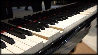 Dieses Klavier spielt ganz von alleine  Yamaha Enspire