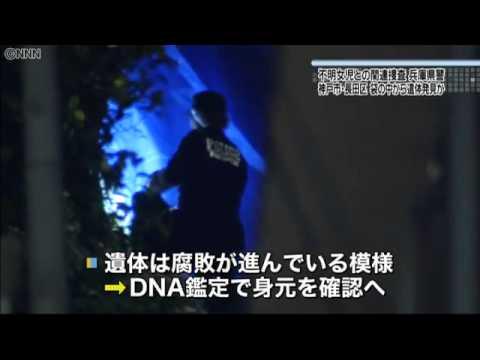不明女児か、袋に入った遺体発見 神戸市
