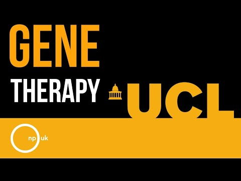 Development of Gene Therapy for NP-C (UCL)