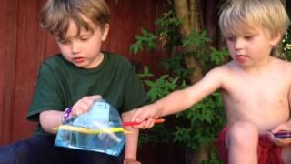 Paja påse med pennor - bNosy Enkla Experiment för Barn 5
