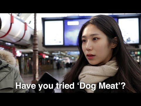 What Koreans Think of Eating Dog Meat?